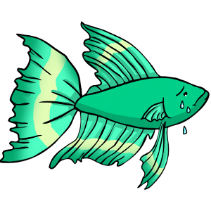 Betta fish niche pets for Do betta fish need a filter