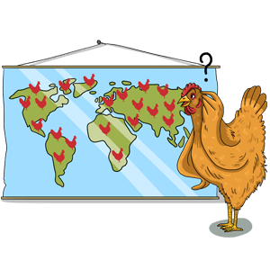 How many chickens are there in the world?